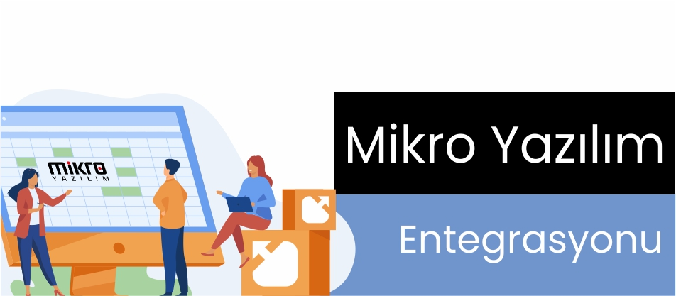 Mikro Yazılım Entegrasyonu